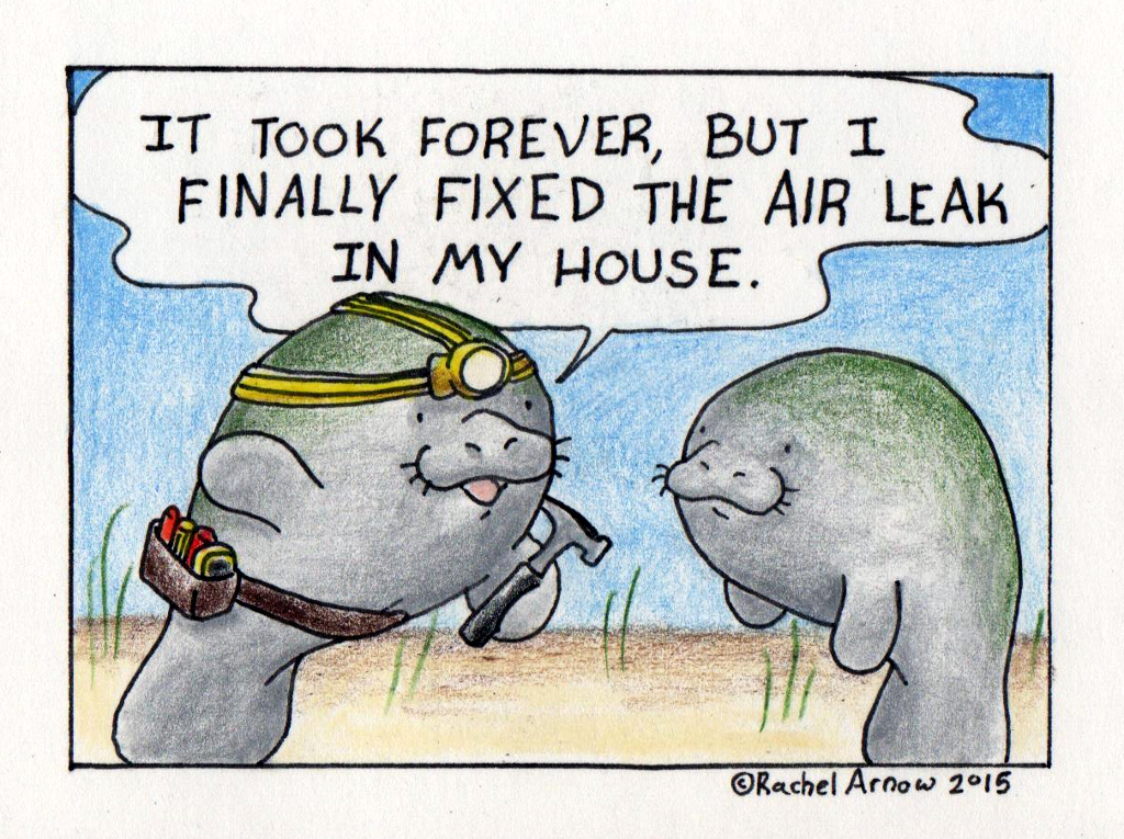 Air Leak