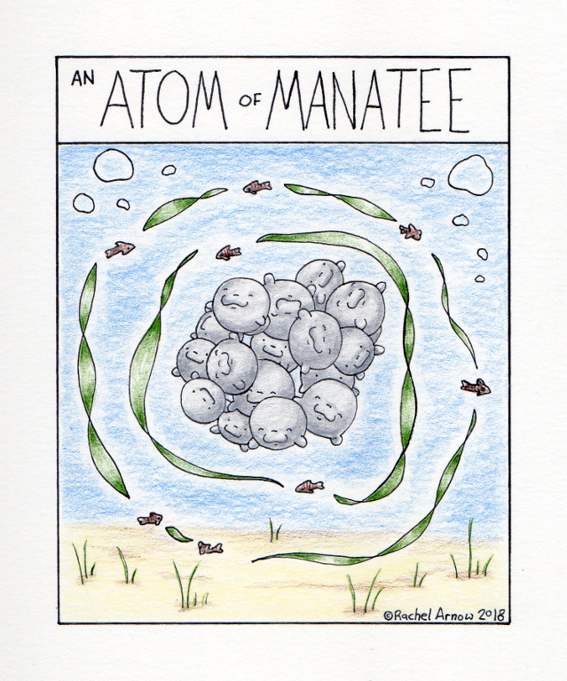 An Atom of Manatee